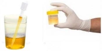 E166 – L'huile essentielle de santal, un colorant mal connu