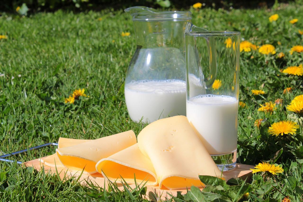 les produits laitiers